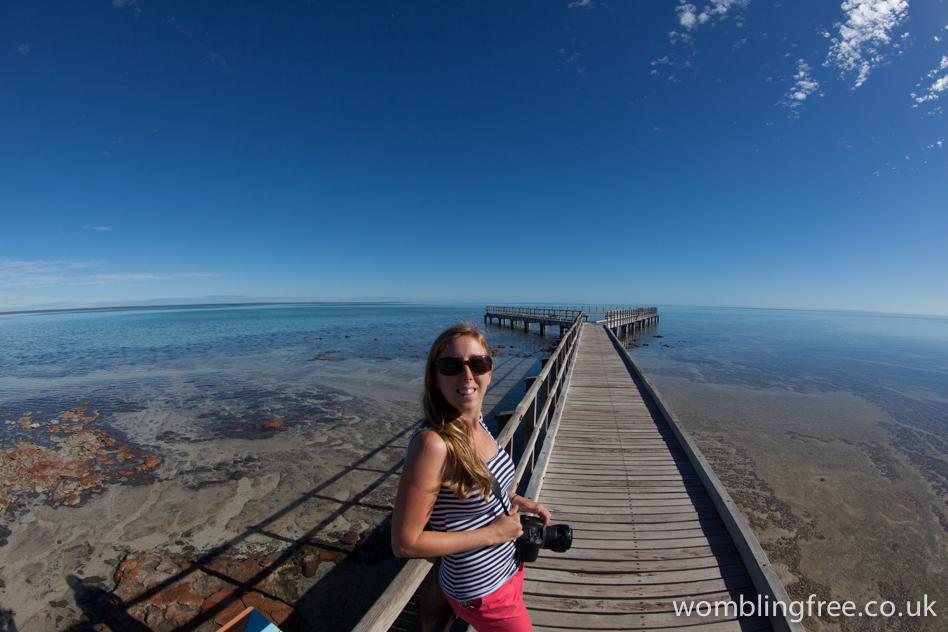 Hamelin Pool Stromatolites.