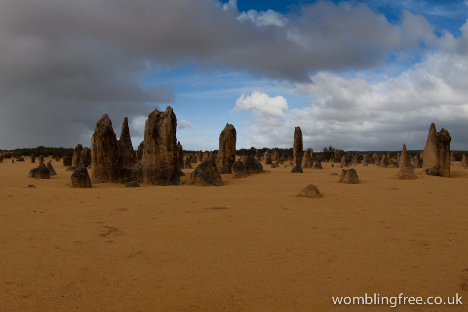The Pinnacles Desert, Nambung NP.